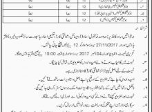 Clinical Technician Jobs Health Department 13 November 2017 (Total Jobs 72) Dera Ismail Khan