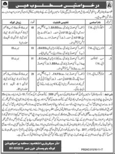Prosecution Dept Stenographer, Librarian, Sub Accountant, Junior Clerk Jobs November 2017 Jang Newspapers