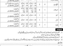 Government Pakistan State Office Management Jobs Jang Newspapers 11th November 2017