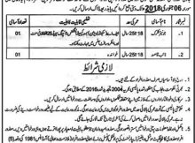 Rahim Yar Khan Deputy Commissioner Office 02 Jobs Khabrain Newspaper 19/12/2017