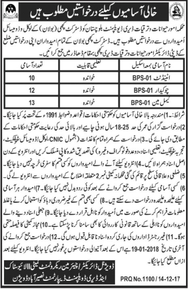 Naseerabad Livestock & Dairy Development 35 Jobs Jang Newspaper 15 December 2017