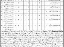 Rajanpur Higher Education Punjab 84 Jobs Khabrain Newspaper 18 December 2017