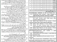 Bhakkar District Education Authority, Educators and AEO's 2076 Jobs 28 December 2017 Khabrain Newspaper