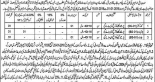 Qasur (Pattoki) Government Post Graduate College 03 Jobs 24 December 2017 Express Newspaper