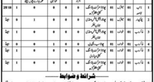Lahore Development Authority, Housing and Town Planning Agency 06 Jobs 25 December 2017 Daily Jang Newspaper