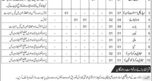 Jehlum Combined Military Hospital (CMH), 12 Jobs 07 January 2018 Daily Express Newspaper.