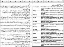 Narowal District Education Authority, Educators and AEO's 485 Jobs 12 January 2018 Dunya Newspaper