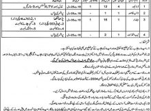 Lahore Directorate General Paste Warning & Control Punjab 33 Jobs, 27 January 2018 Daily Express Newspaper.