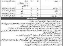 District Chiniot Population Welfare Department, 10 Jobs 06 January 2018 Daily Dunya Newspaper.