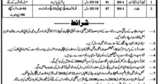 Pindi Bhattyan Noisy Geology Investigation Department 08 Jobs, 12 January 2018 Daily Jang Newspaper