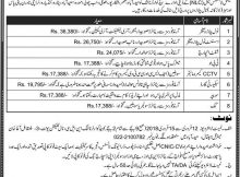 New Jobs 2018 in National Logistic Cell Sindh 28/01/2018 Daily Express Newspaper