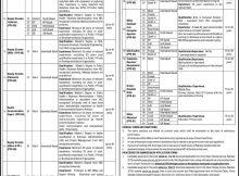 Prime Minister's National Health Program, 78 Jobs, 21 Jan 2018 Daily Express