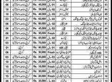 Rajput Group of Companies 155 Jobs, 14 January 2018 Daily Express Newspaper.