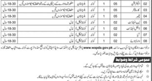 Quetta WAPDA Hospital 08 Jobs, 20 January 2018 Daily Jang Newspaper