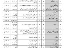 Rawalpindi Armed Forces Institute of Cardiology & NIHD 66 Jobs, 13th February 2018 Daily Express Newspaper