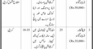 Sindh Labour & Human Resource Jobs Jang Newspaper 19 February 2018