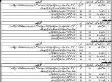 Public Relation Department Azad Jammu & Kashmir (AJK) 16 Jobs 10 February 2018 Daily Osaf Newspaper