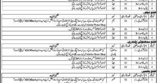 Public Relation Department Azad Jammu & Kashmir (AJK) 16 Jobs 10 February 2018 Daily Osaf Newspaper