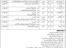 Regulatory Authority for Private Educational Institutions 11 Jobs 05th February 2018 Daily Express Newspaper