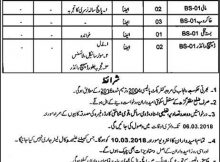 Revenue Department Muzaffargarh 73 Jobs, 18th February 2018, Daily Express Newspaper