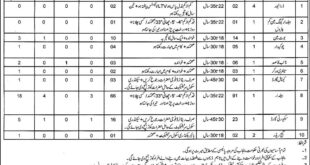 Executive Engineer Small Dams Jehlum Division 150 Jobs 09 February 2018 Daily Express Newspaper