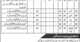 Combined Military Hospital Risalpur 08 Jobs 23 March 2018 Daily Nawaye Waqat Newspaper