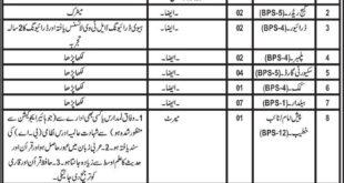Jobs in Irrigation Department Balochistan Daily Jang Newspaper 28 March 2018