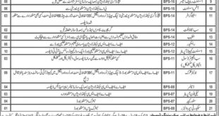 Jobs in Provincial Disaster Management Authority Balochistan Daily Jang Newspaper 21 March 2018
