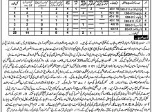 Jobs in Government Degree College Fort Abbas 06 March 2018 Daily Nawaye Waqat Newspaper