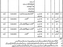 Shah Pur Division LJC Sargodha 17 Jobs 09 March 2018 Daily Pakistan Newspaper