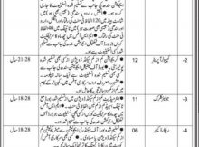 Jobs in Sindh Labor Appellate Tribunal Daily Jang Newspaper 15 March 2018
