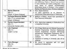Jobs in University of the Punjab March 08 2018 Daily Jang Newspaper