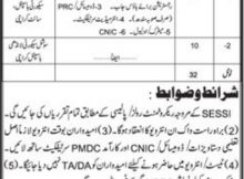 Sindh Employees Social Security Institution 32 Jobs Daily Jang Newspaper 14 March 2018