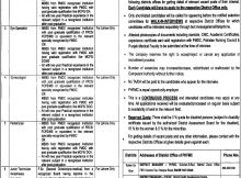 Punjab Health Facilities Management Company New Jobs Daily Express Newspaper 11 April 2018