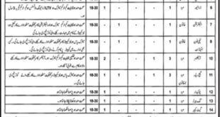 Jobs in Irrigation Department Bhakkar Daily Jang Newspaper 11 April 2018