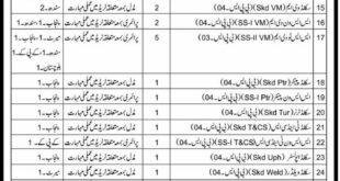 Express Newspaper Pakistan Army Jobs May 13 2018 Technical Staff Required
