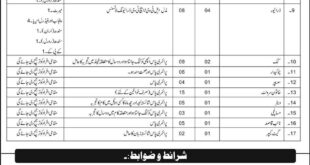 (AFPGMI) Armed Forces Post Graduate Medical Institute Jobs 28 November 2018