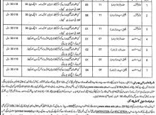 Peshawar Jobs 02 January 2019 Higher Education Department (KPK)