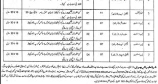Peshawar Jobs 02 January 2019 Higher Education Department (KPK)