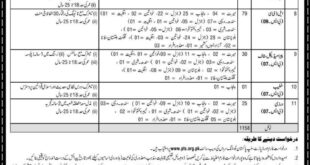 National Highway (NH&MP) Motorway Police Jobs 07th January 2019
