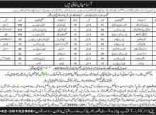 Latest Jobs in Rozgar Pakistan Programme 2020 April May