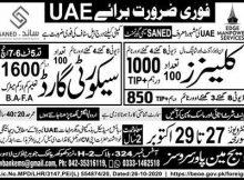 SANED Saymi Govt Jobs (UAE)