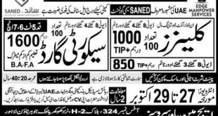 SANED Saymi Govt Jobs (UAE)