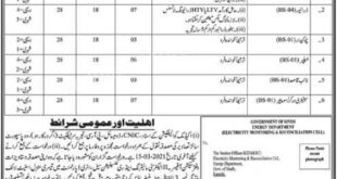 Energy Department Sindh Jobs February 2021