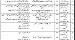 Planning & Development Department Govt of Sindh Jobs 2021