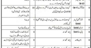 Government of Balochistan Prosecution Stenographers Clerks, Chowkidar Jobs 2021