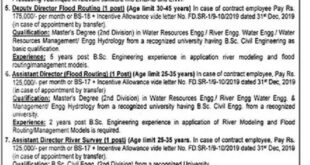 Punjab Irrigation Department Flood Risk Assessment Unit (FRAU) Lahore Directors, Dri